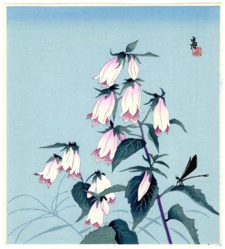 Tokuriki Tomikichiro BELLFLOWERS