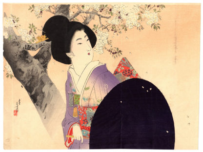 Mizuno Toshikata BEAUTY AND CHERRY BLOSSOMS