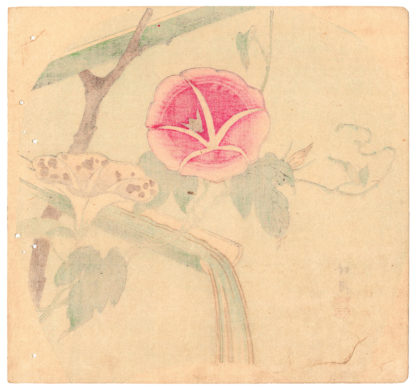 MORNING GLORY AND BAMBOO (Lot 00748)
