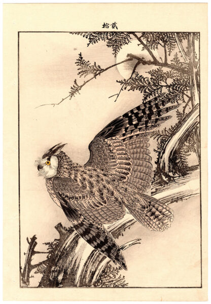 CYPRESS AND EAGLE OWL (Imao Keinen)