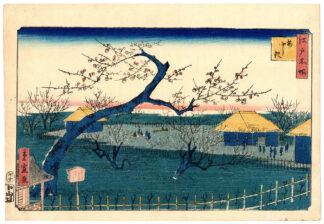 THE PLUM GARDEN (Utagawa Hiroshige II)