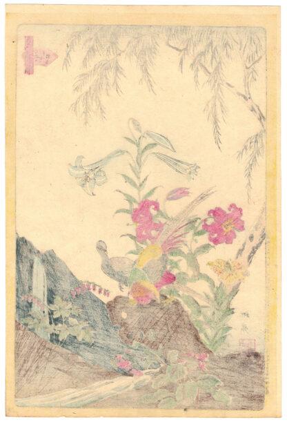 GOLDEN PHEASANTS (Shiba Rinsai)