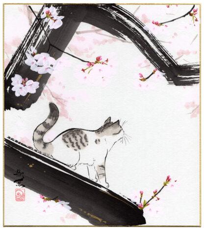 SAKURA AND CAT (Nishimura Kingyo)